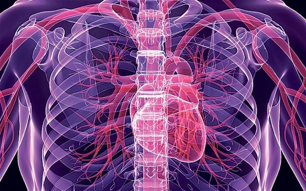 http://www.telegraph.co.uk/news/health/news/10278977/Listening-to-music-is-good-for-the-heart.html