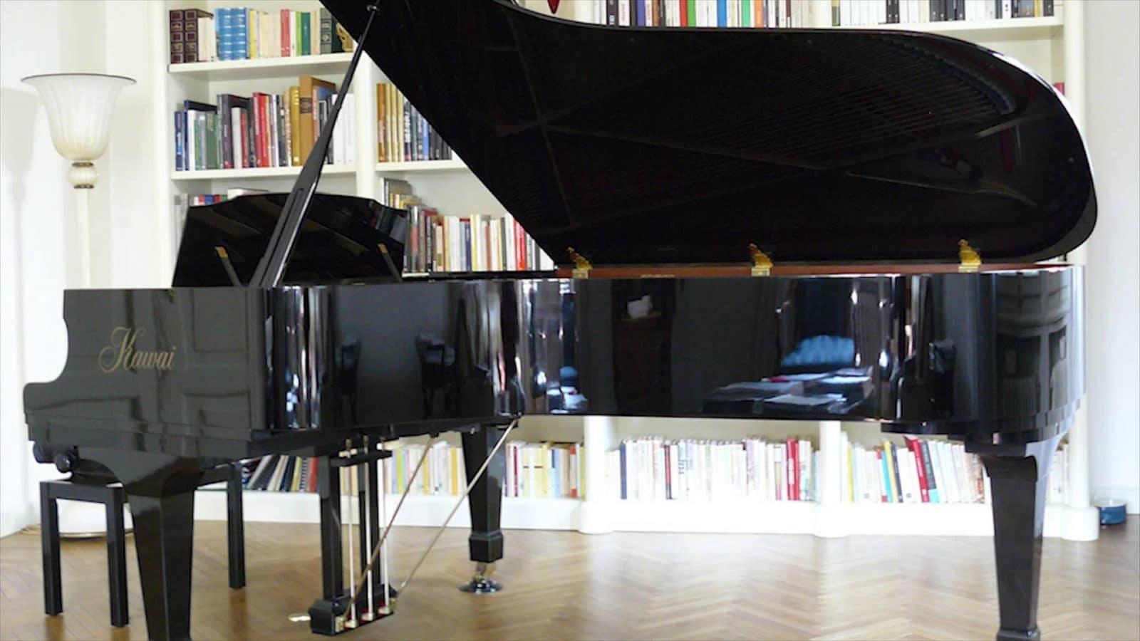 Piano maintenence