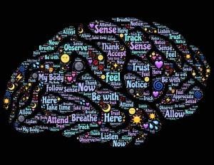 brain rooms