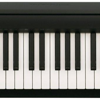 Roland FP-10