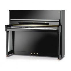 Fridolin F123 Upright Piano